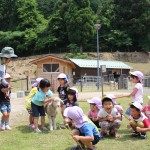 "<span class=""title"">令和元年度羊たちの毛刈り体験会が開催されました。</span>"